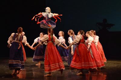 Živana Vajsarová: Málokterý stát má tak propracovanou síť uměleckých škol